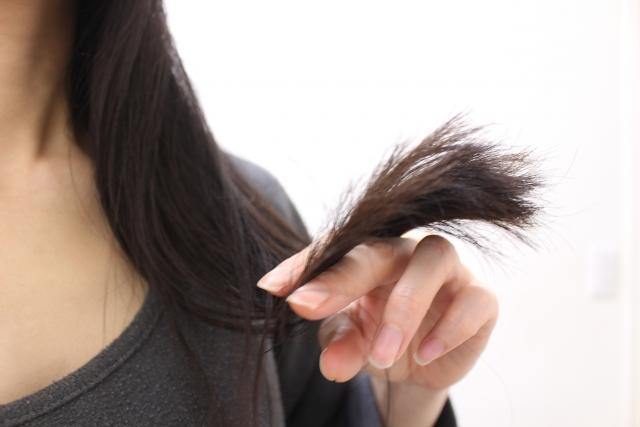 パサつく髪